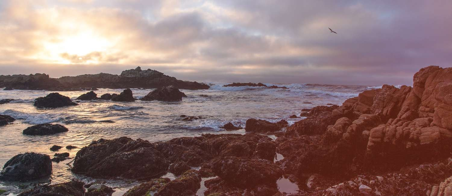 BE PREPARED WITH OUR PACIFIC GROVE WEATHER FORECAST