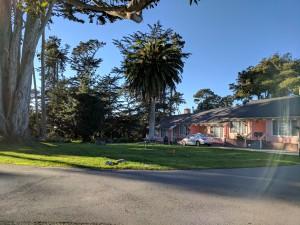 Butterfly Grove Inn - Hotel Driveway