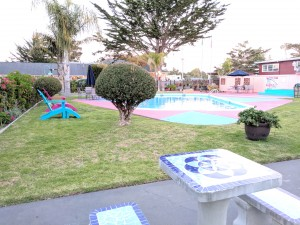 Butterfly Grove Inn - Outdoor Pool